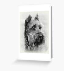 Bearded Dog Greeting Card