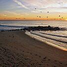 Ocean Grove Sunrise by Debra Fedchin