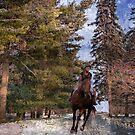 Riding In  the Wintertime by Linda Miller Gesualdo