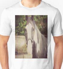Black and White Pinto Horse Unisex T-Shirt