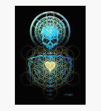 Visionary Skull  Photographic Print