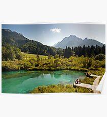 Natural Reserve Zelenci Slovenia Poster