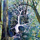"""Forest Lessened - Fallen Tree by Glenn Marshall"