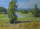 Summer Country Pond Painting in Impressionistic Realism by Karen Ilari