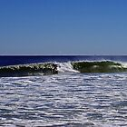 Surf's Up! by Paul Gitto