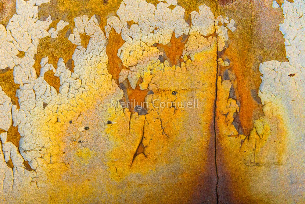 Gold Vein by Marilyn Cornwell