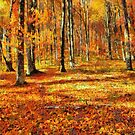 Here Comes The Fall by Joe Misrasi