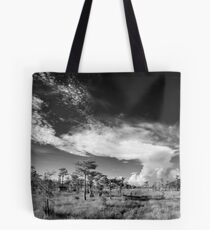 the road to adventure Tote Bag