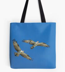 Osprey (Pandion haliaetus) Tote Bag