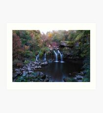 Fall Water Fall Art Print