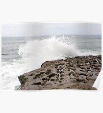 Sunset Cliffs Reef 2 Poster