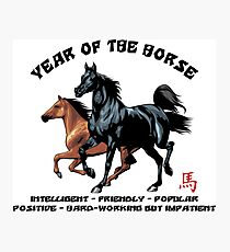 Chinese Zodiac Year of The Horse Photographic Print