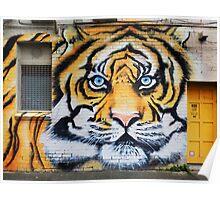 Tiger Graffiti, Abbotsford Poster