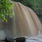 Rock Glen Deluge by Bill Spengler