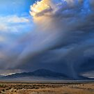 The Storm Is Coming by Gene Praag