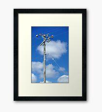 high powered pole Framed Print