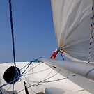 Last summer's final sail. That's the mast on the deck by F.  Kevin  Wynkoop