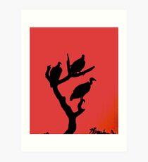 A magical vulture sunset Art Print