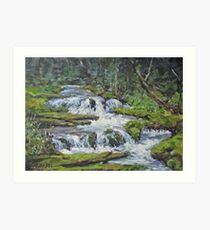 "Original Acrylic ""Forest Creek"" Landscape Painting Art Print"
