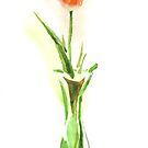 Spring Tulip by KipDeVore