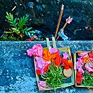 Sacred Bali by David  Perea