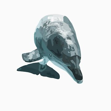 Dolphin by stinaq