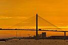 Mekong Delta Sunset 1 by Werner Padarin