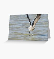 taking fight Greeting Card
