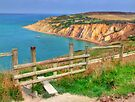The Path To Alum Bay - I.O.W. by Colin  Williams Photography