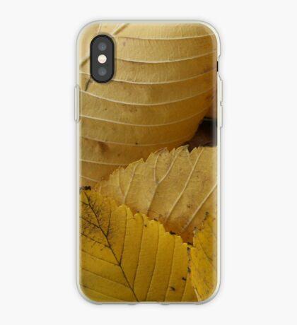 Golden Elm Leaves iPhone Case