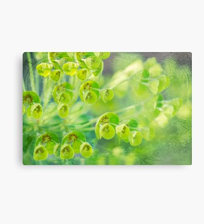Green is the color of Spring Metal Print