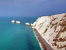 The Needles - I.O.W. by Colin  Williams Photography