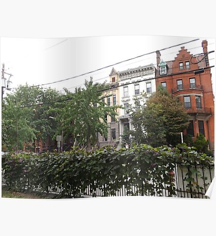 June Historic Jersey City Architecture, Van Vorst Park, New Jersey Poster