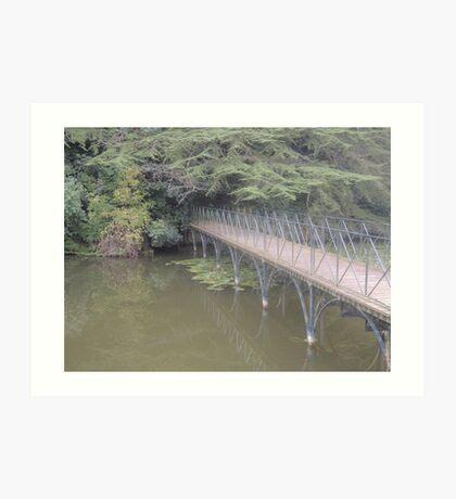 Peaceful Bridge (Blenheim Grounds) Art Print