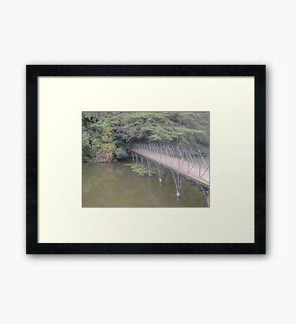 Peaceful Bridge (Blenheim Grounds) Framed Print