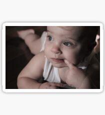 Lindsay (niece) Sticker