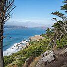 Land's End, San Francisco by James Watkins