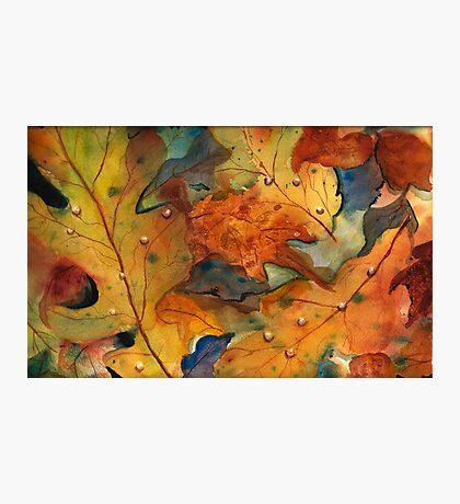 Autumn Embraces You Photographic Print