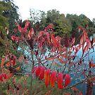 Autumn by Hulko76
