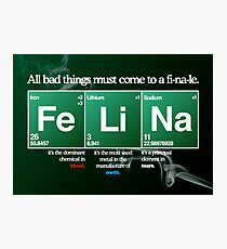 FeLiNa Poster (Breaking Bad) Photographic Print