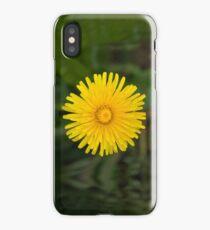 Dandelion Beauty iPhone Case/Skin