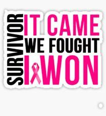 Breast Cancer Survivor I WON Sticker