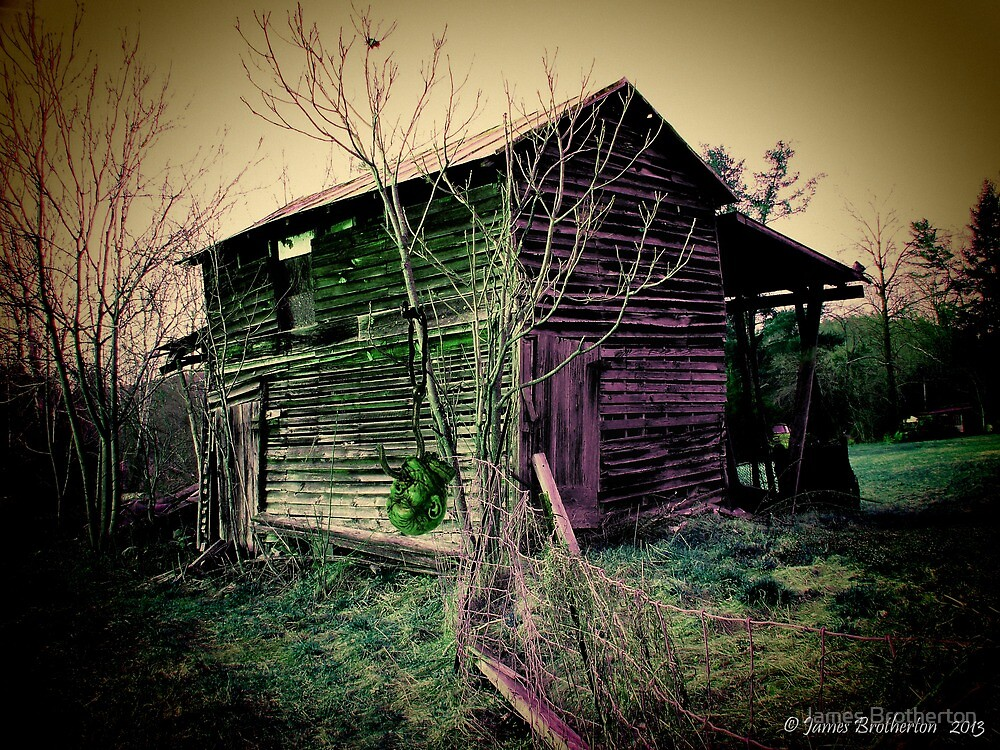 Rotting by James Brotherton