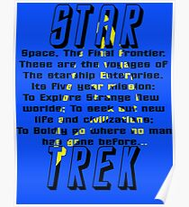 Space! The Final Frontier Poster