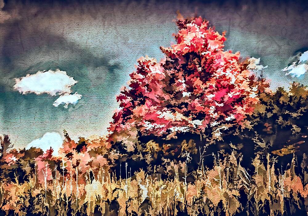 Trailside Colours by Wib Dawson