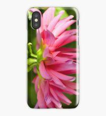 Hanging Pink Dahlia iPhone Case/Skin