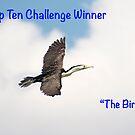 The Birds Top Ten Challenge Winner Banner by Steve Randall