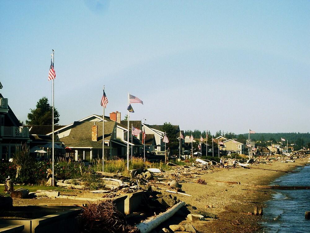 Patriot Beach by ShadowE