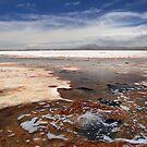 Salar de Uyuni, Bolivia by M De Freitas
