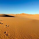 Erg Chebbi, Morocco by M De Freitas